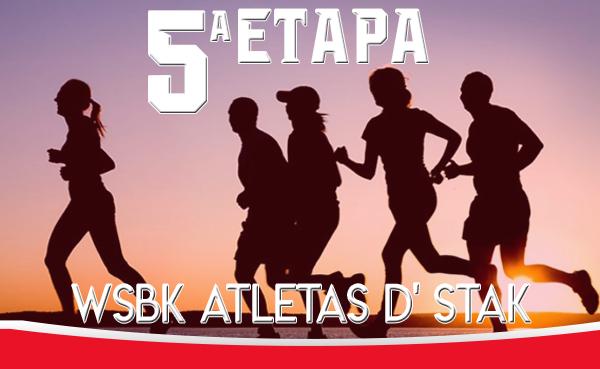 5 etapa