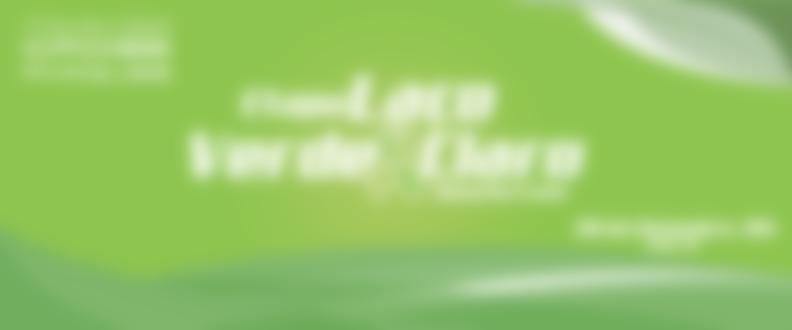 Banner central corrida verde claro